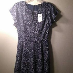 Banana Republic Factory Blue and White Print Dress